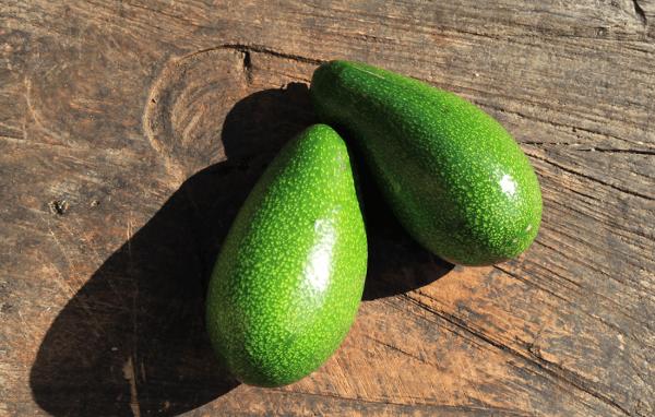 Avakado | Dogal Meyveler | Taze Meyve Sipariş | Online Sipariş | Avokadonun Faydaları